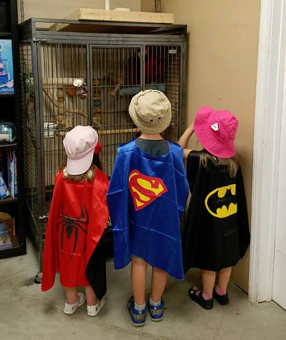 Superheroes Joyce, Lucas, and Maddie enjoying a staycation visit to the pet store.