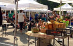 Belmont Farmers' Market Kicks Off on June 8